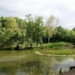 Ressl, rybníček